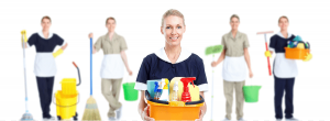 Companion Maids Cleaning Services