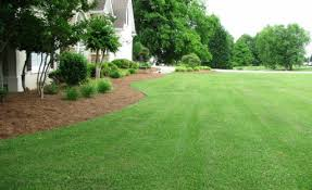 Dubuque, IA Lawncare